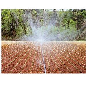 住化農業資材 スミレイン 40 55m巻 潅水チューブ 灌水チューブ