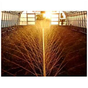 住化農業資材 スミサンスイ Rハウスワイド 100m巻 ~7.2m 潅水チューブ 灌水チューブ