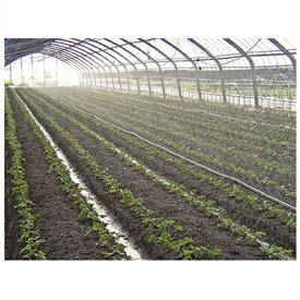 住化農業資材 スミサンスイ R育苗 110m巻 (~5.4m 高畝対応) 潅水チューブ 灌水チューブ