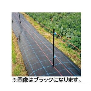 日本ワイドクロス 防草アグリシート SG1515(透水タイプ) 0.75×100m シルバーグレー 3本入