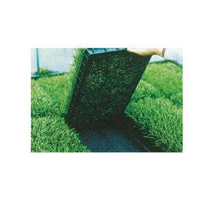 ユニチカ 水稲育苗箱 置床用 不織布 ラブシート ブラック 105cm×50m 5本入 20307BKD