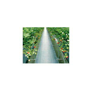 ダイオ化成 防草シート 黒 グランドシート(抗菌剤入り)0.5m×100m【代引不可】