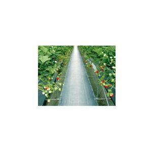 ダイオ化成 防草シート シルバー グランドシートS-BN(抗菌剤無し)0.5m×100m【代引不可】