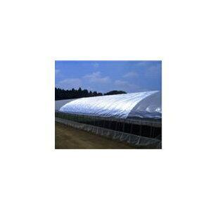 ダイオ化成 遮光ネット 銀 ダイオ農涼シート(遮光率98%)6m×30m【代引不可】 2号
