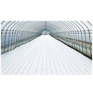 ダイオ化成 防草シート グランドシートα ホワイト 200cm×100m (抗菌剤なし) 2本入