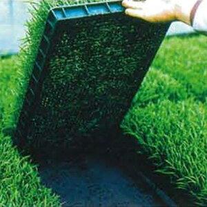 ユニチカ 育苗下敷用 不織布 ラブシート ブラック 135cm×100m 3本入 20507BKD