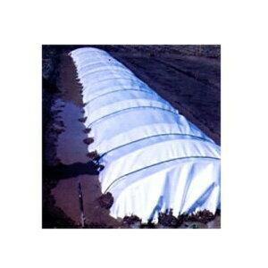 JSP 保温シート ミラクロス #127 1.0mmx270cmx50m (PEクロス貼) 断熱・保温・透過性に優れた被覆資材 農業資材 水稲育苗