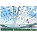 アキレス 内張り・カーテン用 高性能 農ビ やまもも 厚さ0.05mm×巾230cm×100m巻