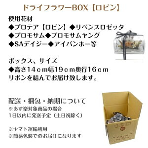 ボックスアレンジロビン
