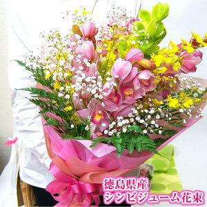 花束、蘭、ラン