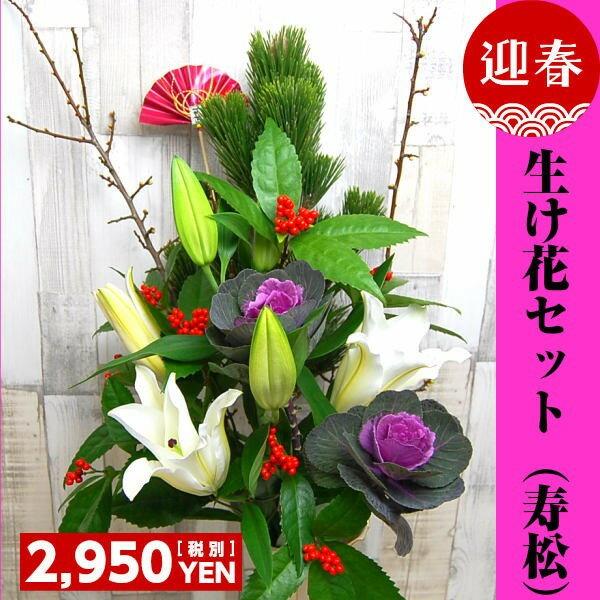生け花【寿松】セット【送料別】お正月 松 千両 迎春