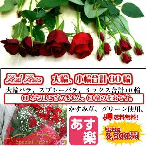 赤バラ60輪花束