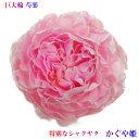 父の日 花 特別な芍薬、巨大輪 かぐや姫10本シャクヤク花束 あす楽13時まで受付中