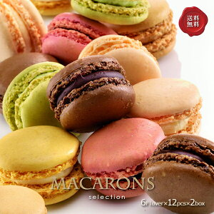 マカロン 6種12個入 2個セット フランス直輸入 Pasquier/パスキエ社の冷凍マカロン 送料無料 [お取り寄せ/バレンタイン/ホワイトデー/スイーツ/ギフト]