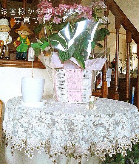 カフェカーテンとトータルで飾りたい『円形 テーブルクロス』直径150cm ティーテーブルをおしゃれに