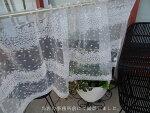 あす楽★【送料無料】NEWオーガンジーの生地に無数の星の様な刺繍『カフェカーテン』珍しいデザインセミロング縦約60cm小窓用【HLS_DU】