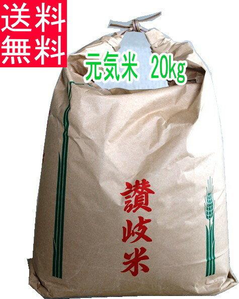 【+10倍ポイント】【H30新米】元気米玄米20kg(ピロール農法で作ったピロール米)【北海道、沖縄は追加料金必要です。】【楽ギフ_のし宛書】
