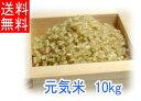 【送料無料】令和1年度産「元気米」玄米《10kg》(ピロール農法で作ったピロール米)【あす楽対象商品】【楽ギフ_のし宛書】【rice_RH_1205】05P27May16