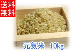 【送料無料】令和2年度産「元気米」玄米《10kg》(ピロール農法で作ったピロール米)【あす楽対象商品】【楽ギフ_のし宛書】【rice_RH_1205】05P27May16