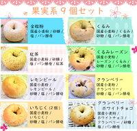 AiBagel果実系ベーグル9個セット/職人の手作りでもっちもち!/北海道小麦100%/生地には卵・乳・油脂不使用・無添加