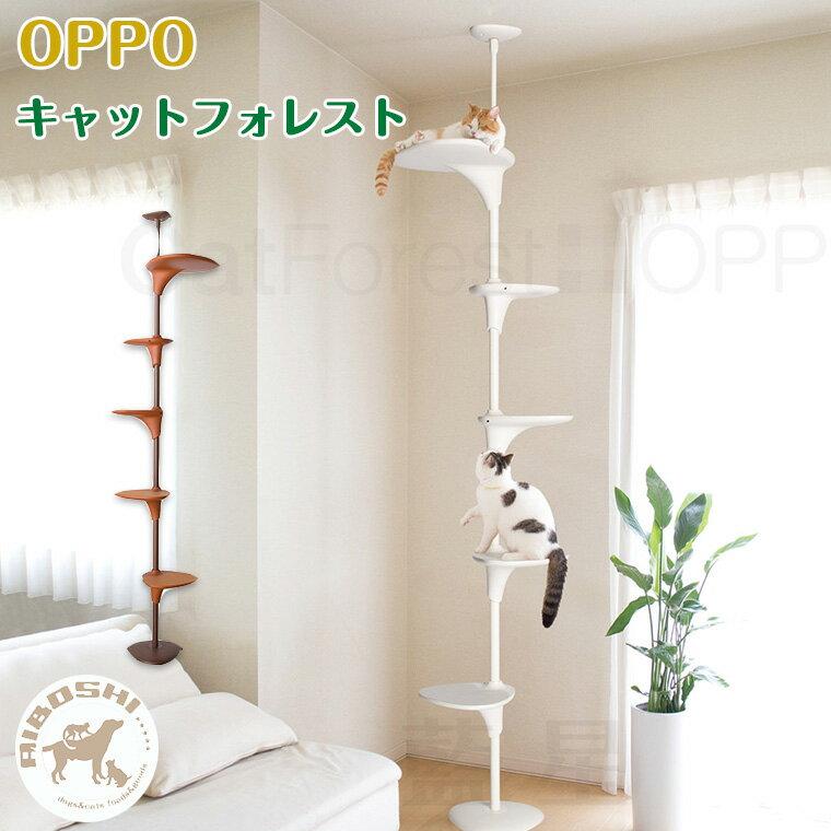 OPPO オッポ キャットフォレスト CatForest【配送区分:P】