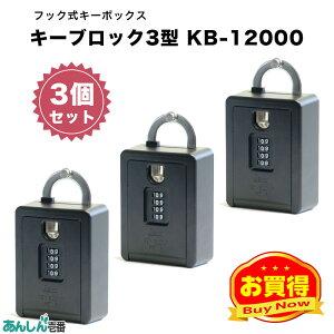 物件 賃貸 玄関 鍵 管理 会社 キー ボックス 収納 キーブロック 4型 KB-12000 (3個セット)