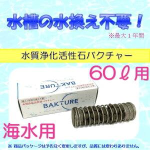 【バクチャー】海水 60L用 水質浄化活性石 金魚・熱帯魚の水槽水槽の水換え不要1年間水質調整剤
