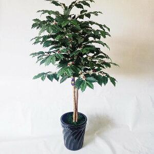 コーヒーの木(造花)         【高160×幅75】【光触媒】
