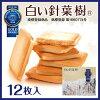 白色软木 iTQi-3 星长期多沙纪念品长野 12 与 cookie 服务地区白巧克力有限公司马修礼物 chocosand 10P23Sep15