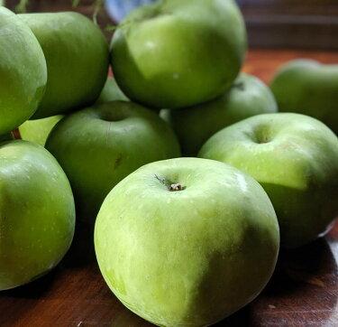お試し!!\メール便でお届け/さわやか青リンゴ30g×3袋(長野県産りんご使用ドライフルーツリンゴ摘果りんごりんごリンゴ袋菓子ポッケット菓子りんご加工品長野県お土産【ゆうパケット】