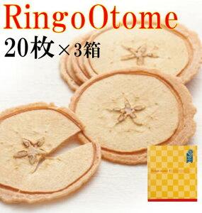 【iTQi 三ッ星受賞】【送料無料】Ringo Otome20枚×3箱セット りんご乙女 お中元 ギフト プレゼント 摘果りんご りんごお菓子 薄焼きクッキー おせんべい