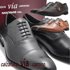 マドラス(madras) via cammino ヴィアカミーノ 本革 紐靴 ストレートチップ ビジネスシューズ No1505