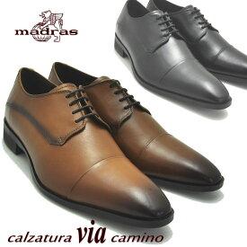 マドラス(madras) via cammino ヴィアカミーノ 本革 紐靴 ストレートチップ No4009