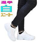 白スニーカー/レディース/超軽量/シンプル/通学/旅行/No5975
