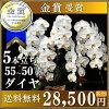 大白花的蘭花 (蝴蝶) 白色 5 片和鑽石 (約 55 50 環) 8 寸碗禮品開業慶典