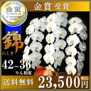 Nishiki23500
