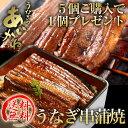 【送料無料】国産うなぎ串蒲焼き タレ・山椒付 今だけ5個ご購入で1個プレゼント!浜名湖うなぎのあいかね