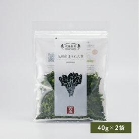 乾燥ほうれん草 40g×2袋