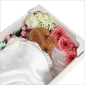 お悔みセット(ドライアイス5kg・ペットの棺グレーGM)柴犬・コーギー・シェットランド