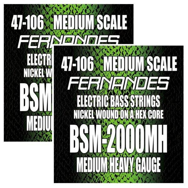 【メール便・送料無料・代引不可】【2セット】FERNANDES フェルナンデス BSM-2000MH ミディアムスケール ベース弦【smtb-TK】