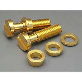 【メール便・送料無料・代引不可】FIXER フィクサー Tailpiece Lock System インチ/ゴールド テールピース ロックシステム 【smtb-TK】
