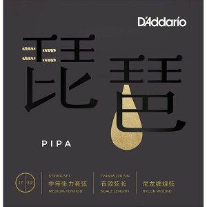 【メール便・送料無料・代引不可】【5セット】D'Addario ダダリオ PIPA01 琵琶 弦【smtb-TK】