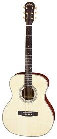 【ポイント2倍】【送料込】【ケース付】ARIA/アリア AF-501 N オール単板 アコースティックギター【smtb-TK】