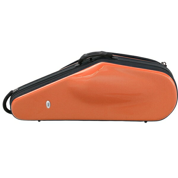 【ポイント7倍】【送料込】bags/バッグス EFTS-ORA テナーサックス用 ファイバーグラス製 ハードケース【smtb-TK】