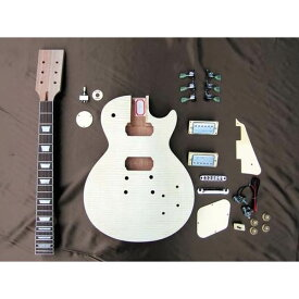 【送料込】HOSCO ホスコ ER-KIT-LP エレキギター/レスポールタイプ 組み立てキット ★難易度:中【smtb-TK】