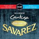 【ポイント2倍】【メール便・送料無料・代引不可】【1セット】SAVAREZ サヴァレス 510 ARJP -Mixed tension- ALLIANCE…