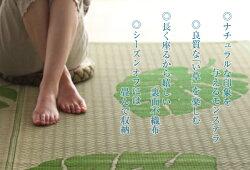 モダンい草ラグ幅176cm×230cm絨毯裏面不織布ラグカーペットモンステラ柄節電対策♪【05P04Jul15】
