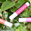 Trend holik organic color lip (pink red orange )3.8g Ishizawa Research Institute [trend holic trend holik red color lip balm moisturizer moisturizing organic natural]
