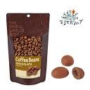 第3世界ショップ フェアトレード 珈琲豆チョコ 50g オーガニックチョコレート [第三世界ショップ 乳化剤不使用 白砂糖…