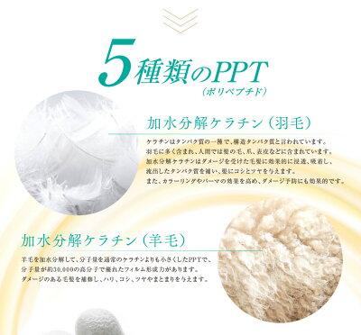 洗い流さないトリートメントポリペプチドPPTヘアエマルジョン5.5シャンプー解析ドットコム1位